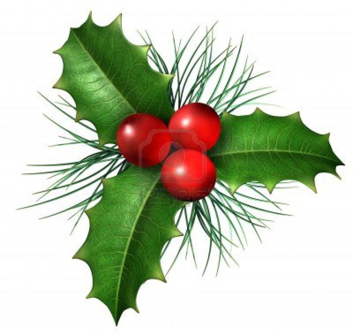 Clip Art Holly Berries